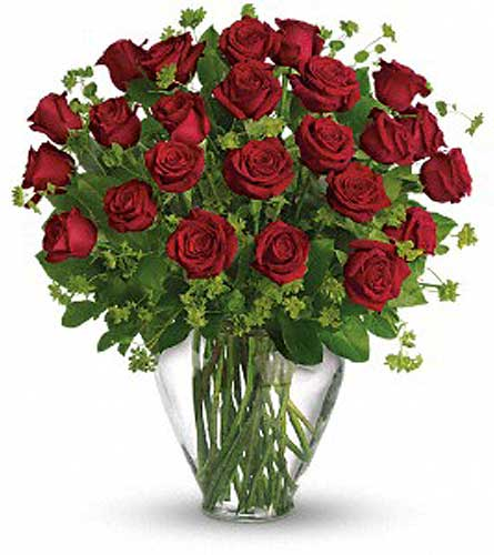 24 Red Roses Vased in Orlando FL, Colonial Florist