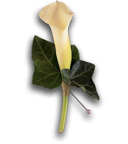 Miniature Calla Boutonniere in Albany NY, Emil J. Nagengast Florist