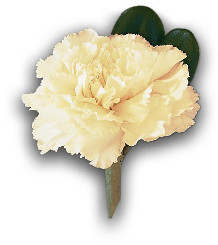 White Carnation Boutonniere in Palm Springs CA, Palm Springs Florist, Inc.