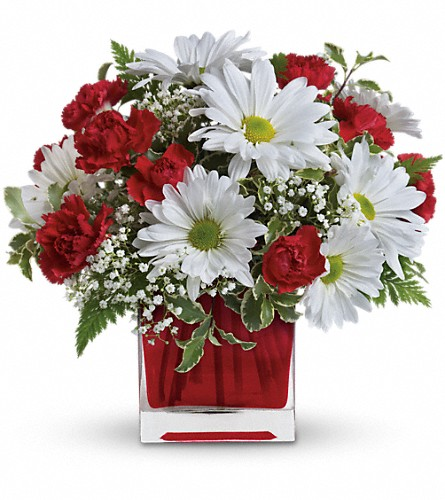 Red And White Delight by Teleflora in Garden City NY, Hengstenberg's Florist Inc.