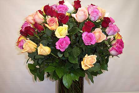 3dz Multi-Colored Long Stem Roses in New York NY, Fellan Florists Floral Galleria