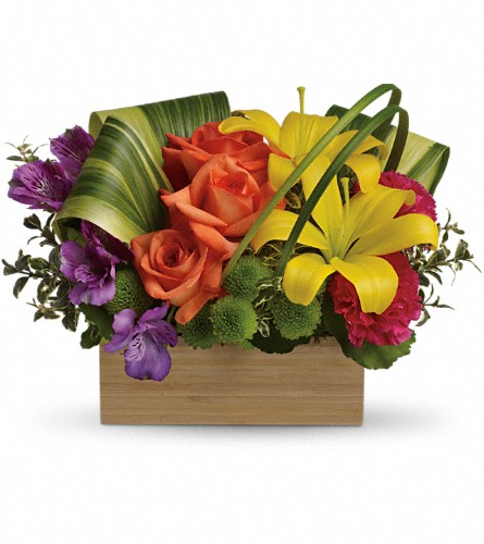 Teleflora's Shades Of Brilliance Bouquet in Jackson MI, Karmays Flowers & Gifts