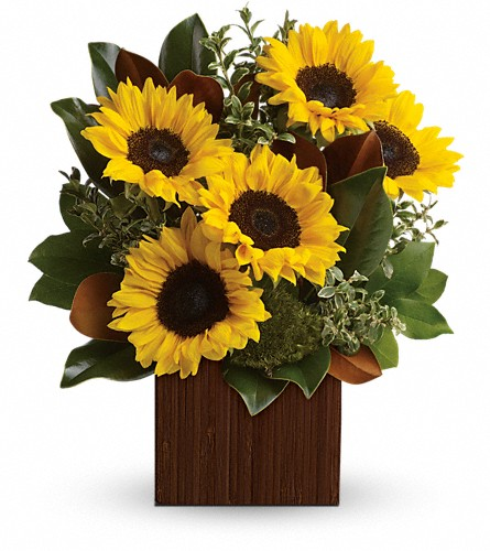 You're Golden Bouquet by Teleflora in Jackson MI, Karmays Flowers & Gifts