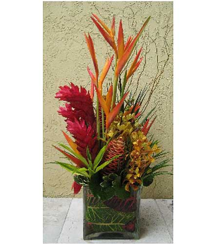 Tropical Pina Colada in San Antonio TX, Allen's Flowers & Gifts