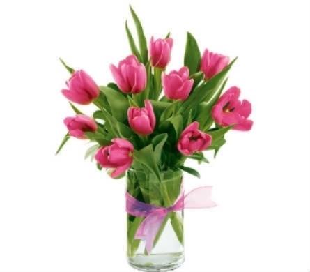 Spring Tulips in Warren MI, Downing's Flowers & Gifts Inc.