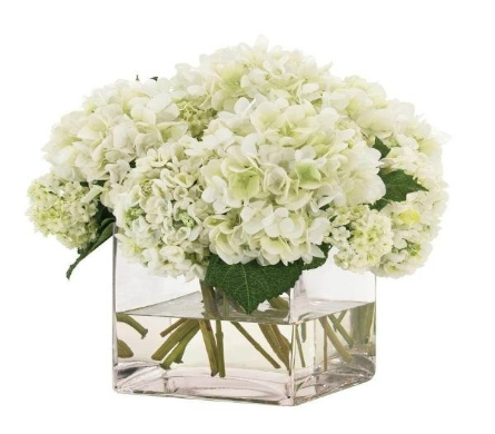 Hydrangeas Cubed in Indianapolis IN, George Thomas Florist