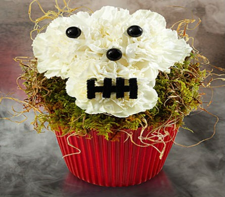 Bad to the Bones Cupcake in Casper WY, Keefe's Flowers
