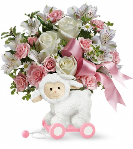 Teleflora's Sweet Little Lamb - Baby Pink in Baltimore MD, Raimondi's Flowers & Fruit Baskets