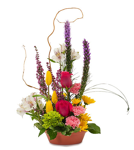 Pixie Garden in send WA, Flowers To Go, Inc.
