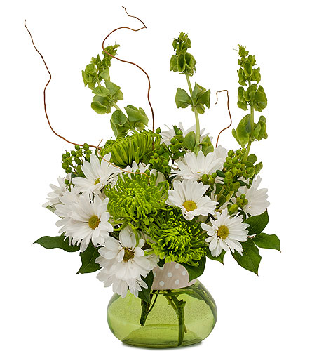 Dots and Daisies in Placentia CA, Expressions Florist