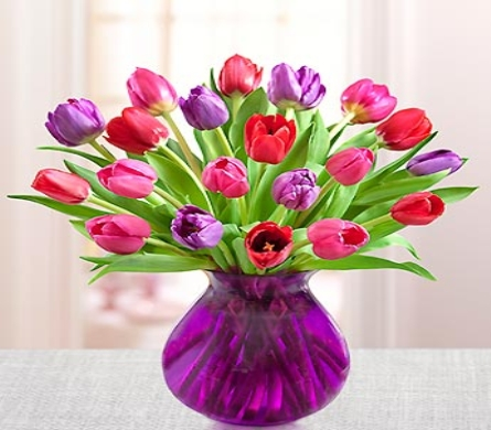 Tulips for Your Valentine� in Lindenhurst NY, Evergreen Florist