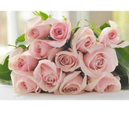 Roses in Warren MI, Downing's Flowers & Gifts Inc.