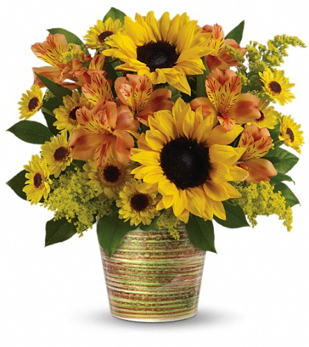 Teleflora's Grand Sunshine Bouquet in Oak Forest IL, Vacha's Forest Flowers