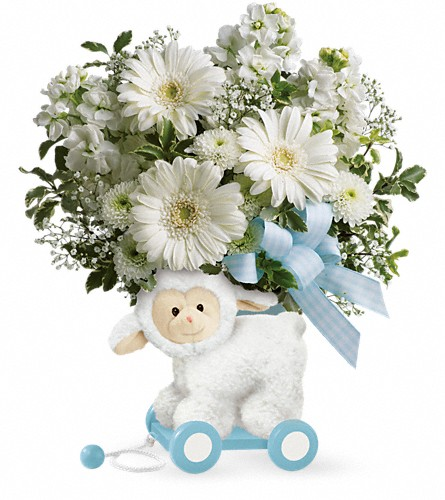 Teleflora's Sweet Little Lamb - Baby Blue in DeKalb IL, Glidden Campus Florist & Greenhouse
