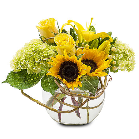 Rays of Sunshine in Placentia CA, Expressions Florist