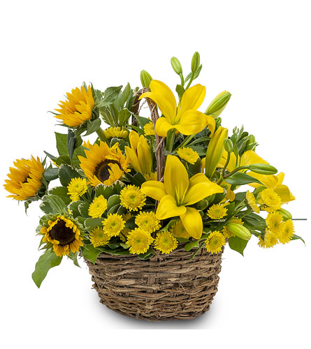 Basket of Sunshine in Camp Hill and Harrisburg PA, Pealer's Flowers