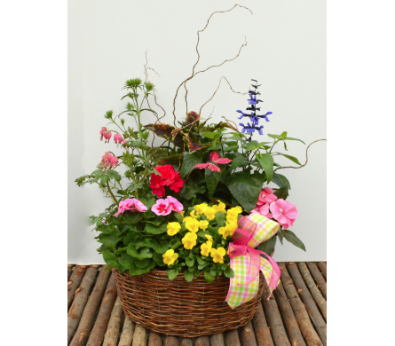 Perennial & Annual Basket in Utica NY, Chester's Flower Shop And Greenhouses