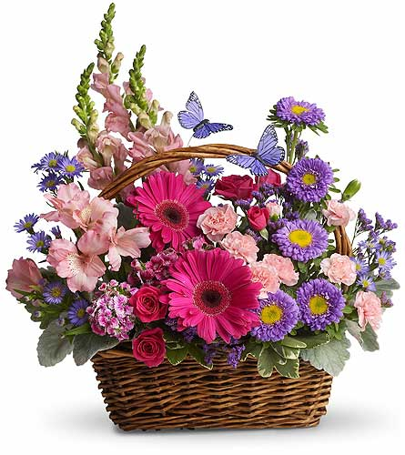 Country Basket Blooms in Detroit and St. Clair Shores MI, Conner Park Florist