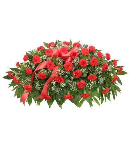 Timeless Traditions Red Carnation Casket Spray in Chicagoland IL, Amling's Flowerland