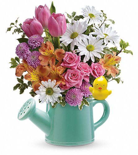 Teleflora's Send a Hug Tweet Tweet Bouquet in Kent WA, Blossom Boutique Florist & Candy Shop