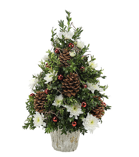 Traditional Boxwood in Redwood City CA, Redwood City Florist
