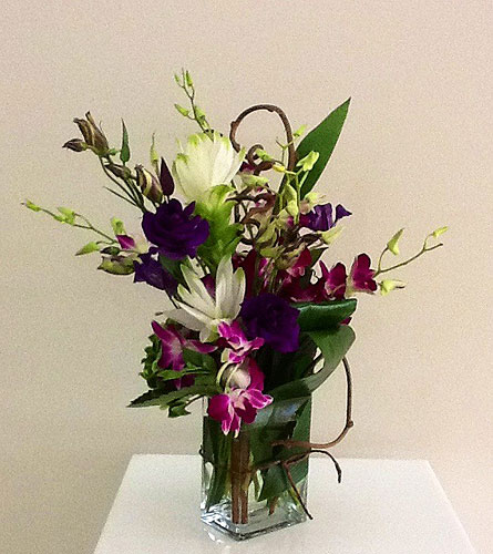 Orchid Surprise in Houston TX, River Oaks Flower House, Inc.
