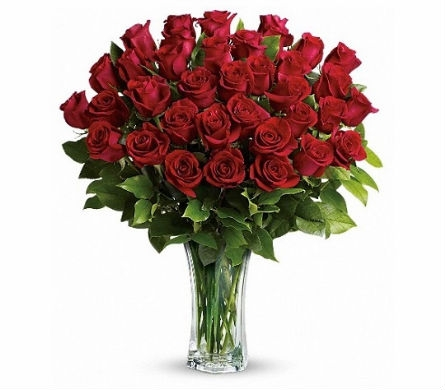 Image result for three dozen roses