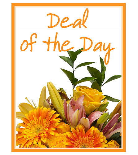 Deal of the Day in Madison WI, George's Flowers, Inc.