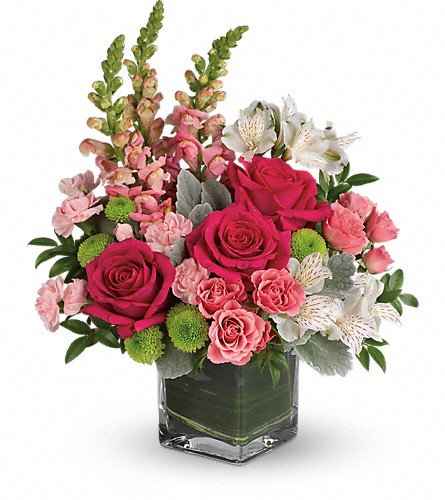 Teleflora's Garden Girl Bouquet in Bradford MA, Holland's Flowers