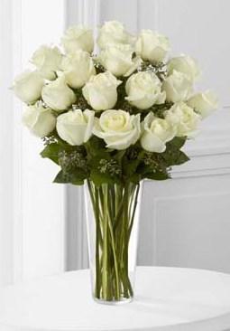 18 Long Stem White Roses in Fond Du Lac WI - Haentze Floral Co