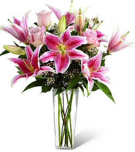 Oriental Lilies in Agassiz BC, Holly Tree Florist & Gifts