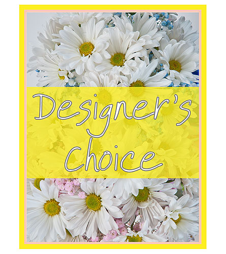 Designer's Choice - New Baby in Sylvania OH, Beautiful Blooms by Jen