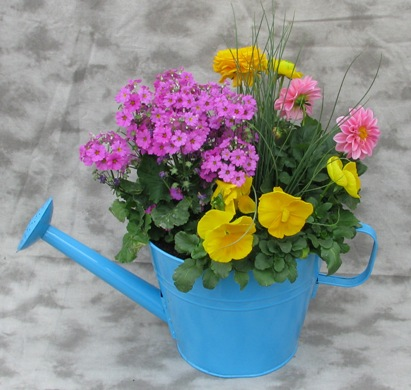Shower Mom with Affection Planter in Crystal Lake IL, Countryside Flower Shop