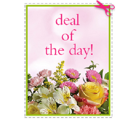 Deal of the Day with Free Upgrade! in Moline IL, K'nees Florists
