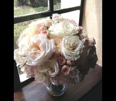 view larger blush garden roses