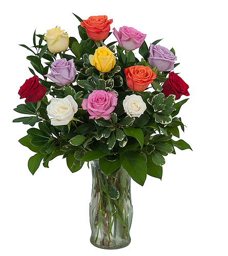 Dozen Roses - Mix it up! in Elyria OH, Botamer Florist & More