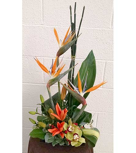 Bear Creek Birds of Paradise in Redmond WA, Bear Creek Florist