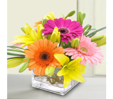 Bright & Stunning in Indianapolis IN, George Thomas Florist