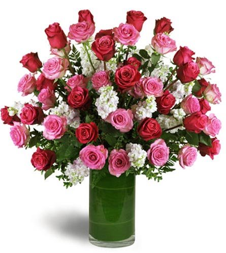 Roses in Needham MA, Needham Florist