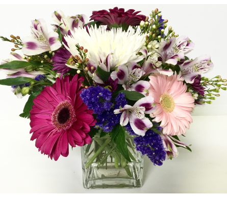Gerbera in 4x4 Glass Cube - Designed All-Around in Wyoming MI, Wyoming Stuyvesant Floral