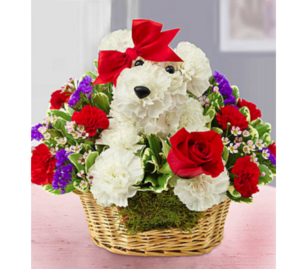 Love Pup in Lindenhurst NY, Evergreen Florist