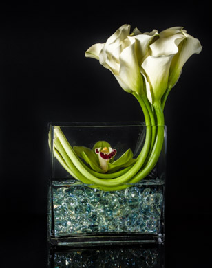 Dreaming Callas  in New York NY, Starbright Floral Design