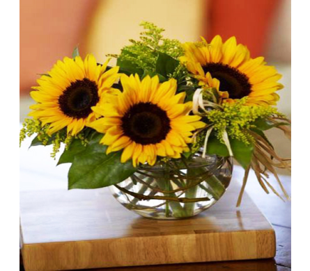 Sunny Sunflowers in Indianapolis IN, George Thomas Florist