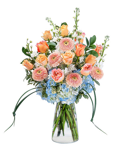 Creamsicle Supreme in Sault Ste Marie MI, CO-ED Flowers & Gifts Inc.
