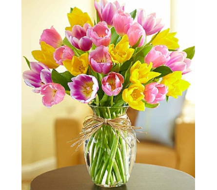 Timeless Tulips in Largo FL, Rose Garden Flowers & Gifts, Inc