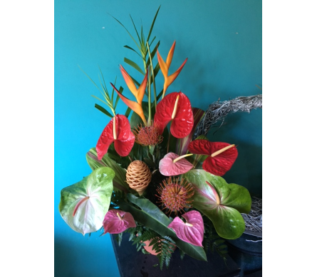 Tropical Arrangement - Deal of the Day in Honolulu HI, Stanley Ito Florist