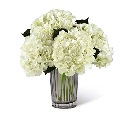 The FTD� Ivory Hydrangea Bouquet in Mission Viejo CA, Conroy's Flowers