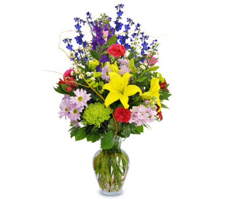 Dazzler in Bound Brook NJ, America's Florist