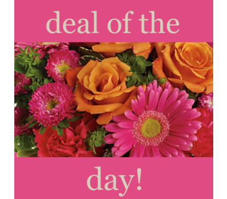 Deal of the Day Bouquet  in Villa Park IL, Ardmore Florist