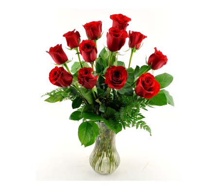 One Dozen Roses in Knoxville TN, Crouch Florist & Gift